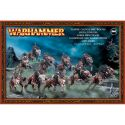 Warhammer: Vampire Counts Dire Wolves 91-15